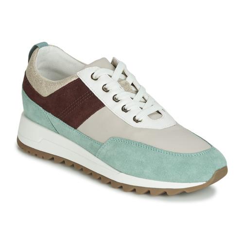 Shoes Women Low top trainers Geox D TABELYA Beige / Brown / Green