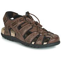 Shoes Men Outdoor sandals Geox UOMO SANDAL STRADA Brown