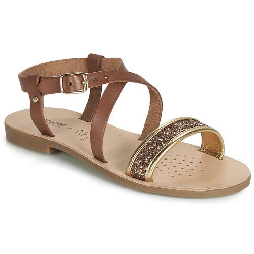 Shoes Girl Sandals Geox J SANDAL VIOLETTE GI Brown