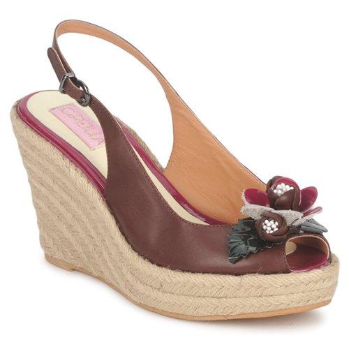 Shoes Women Sandals C.Petula GLORIA Brown / Fuschia