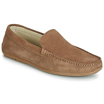 Shoes Men Loafers André BIGOLO Brown