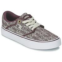 Shoes Women Low top trainers DC Shoes MIKEY TAYLOR VU Syrah