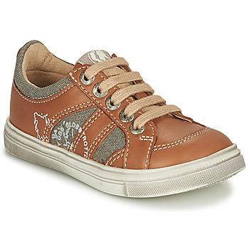 Shoes Boy Low top trainers GBB PALMYRE Cognac