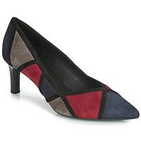 Shoes Women Heels Geox D BIBBIANA Marine / Bordeau