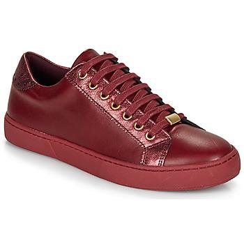 Shoes Women Low top trainers André BERKELEY Bordeaux