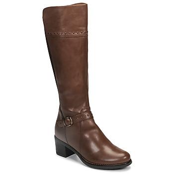 Shoes Women High boots André MANOU Brown