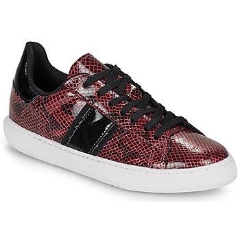 Shoes Women Low top trainers André FRISBEE Bordeaux