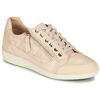 Shoes Women Low top trainers Geox D MYRIA Nude / Beige