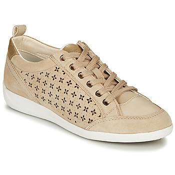 Shoes Women Low top trainers Geox D MYRIA Beige