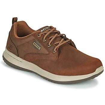 Shoes Men Low top trainers Skechers DELSON ANTIGO Brown