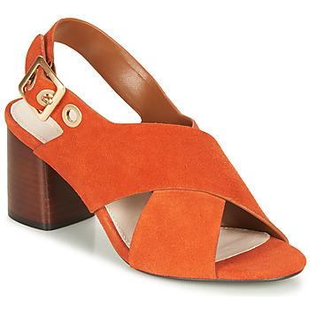 Shoes Women Sandals André JANNINE Orange
