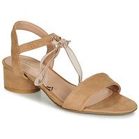 Shoes Women Sandals André PAULENE Beige