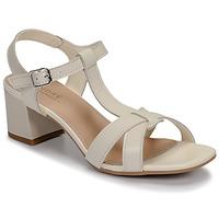 Shoes Women Sandals André JOSEPHINE White