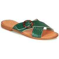 Shoes Women Sandals André BRAIDY Green