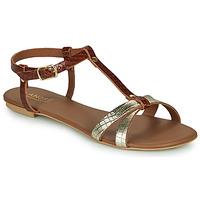 Shoes Women Sandals André RODHIE Camel
