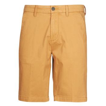 Clothing Men Shorts / Bermudas Timberland SQUAM LAKE STRETCH TWILL STRAIGHT CHINO SHORT Beige