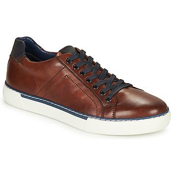 Shoes Men Low top trainers André SHANN Brown