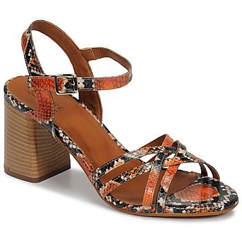 Shoes Women Sandals André BRYNN Orange