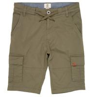 Clothing Boy Shorts / Bermudas Timberland TAO Green