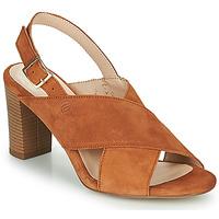 Shoes Women Sandals Betty London MARIPOL Cognac