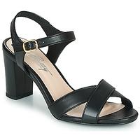 Shoes Women Sandals Betty London MOUDINE Black