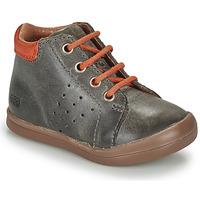 Shoes Boy Hi top trainers GBB TIDO Grey