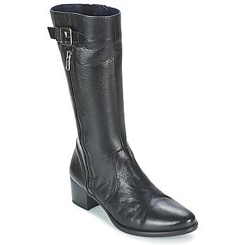 Shoes Women Mid boots Dorking LOLETA Black