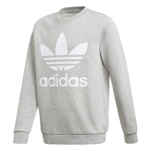 Clothing Boy Sweaters adidas Originals TREFOIL CREW Grey