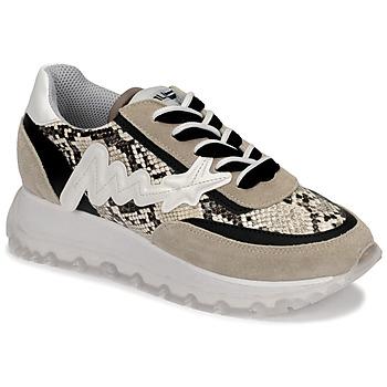 Shoes Women Hi top trainers Meline TRO1700 Beige / Python