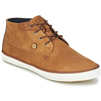 Shoes Men Hi top trainers Faguo WATTLE Brown