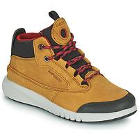 Shoes Boy Mid boots Geox AERANTER ABX Honey