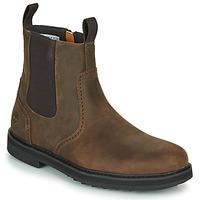 Shoes Men Mid boots Timberland SQUALL CANYON BROG WP CHL Brown