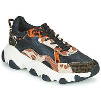 Shoes Women Low top trainers Gioseppo ALEKSIN Black / Orange