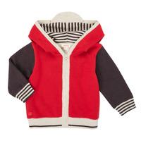 Clothing Boy Jackets / Cardigans Catimini CR18000-38 Multicolour