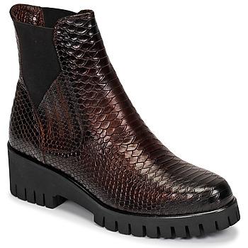 Shoes Women Mid boots Sweet Lemon DAYLIN Bordeaux