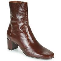 Shoes Women Ankle boots Jonak DRIELLE Brown
