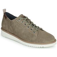 Shoes Men Low top trainers Geox U DAYAN Brown