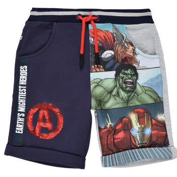 Clothing Boy Shorts / Bermudas Desigual 21SBPK03-2047 Multicolour