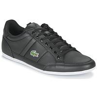 Shoes Men Low top trainers Lacoste CHAYMON BL21 1 CMA Black