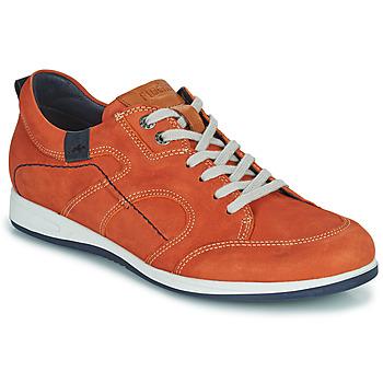 Shoes Men Low top trainers Fluchos 9734-CRETA-CUERO Brown