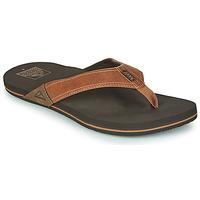 Shoes Men Flip flops Reef REEF NEWPORT Brown