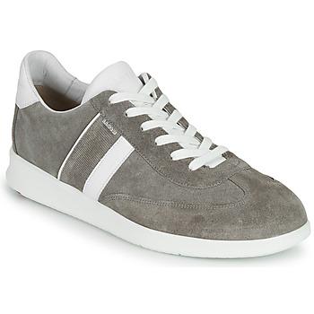 Shoes Men Low top trainers Lloyd BURT Grey