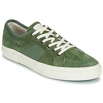 Shoes Men Low top trainers Globe SURPLUS Green