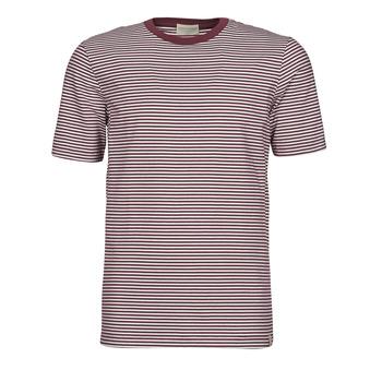 Clothing Men Short-sleeved t-shirts Scotch & Soda 160847 Red / White
