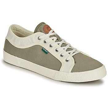Shoes Men Low top trainers Kickers ARVEIL Kaki / White