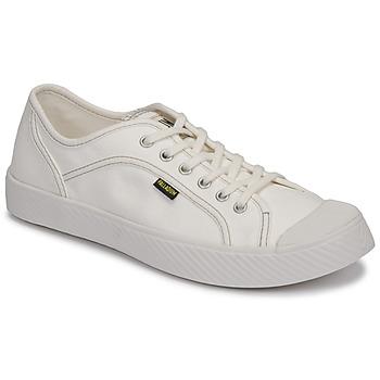 Shoes Low top trainers Palladium PALLAPHOENIX CVS II White