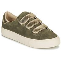 Shoes Women Low top trainers No Name ARCADE STRAPS Kaki