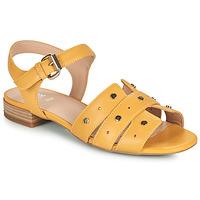 Shoes Women Sandals Geox D WISTREY SANDALO C Yellow