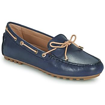 Shoes Women Loafers Geox D LEELYAN C Blue / Beige
