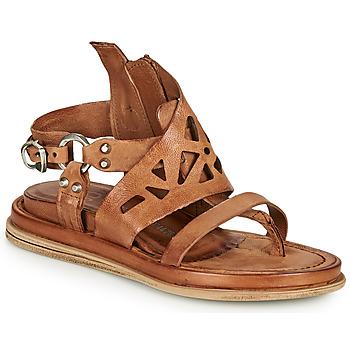 Shoes Women Sandals Airstep / A.S.98 POLA GRAPH Camel